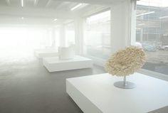 TOKUJIN YOSHIOKA INC. | New Project | A&W