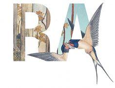 EPHEMERA #design #collage #typography