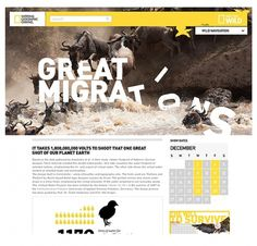 National Geographic blog on the Behance Network