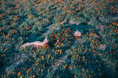 Benjamin Heath | PICDIT