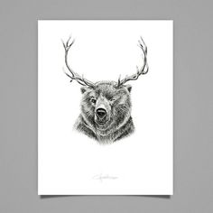 The Reinbear, illustration by Cecilia Hedin #deer #ink #white #woodland #drawing #black #hybrid #illustration #and #bear #animal