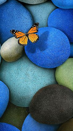 Butterfly and Stone iOS Wallpaper
