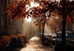 Iloveimgs #autumn