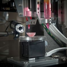 """One day it will be possible to 3D-print a human liver"" #print #3d #liver"
