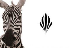 Sankara | Identity Designed #form #logo #zebra #symbol #symmetry