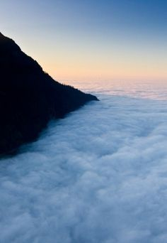 tumblr_m2uql4x4021qfwt2xo1_1280.jpg (530×768) #fog
