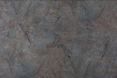 40269-Wild Stone