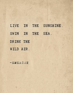 Live in the sunshine. Swim in the sea. Drink the wild air by Pranatheory