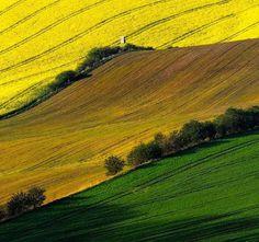 Nature Landscapes by Janek Sedlar