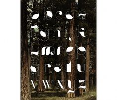 Forest - Grand National Studio #grand #studio #type #forest #national #typography