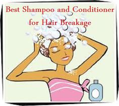 Best hair breakage shampoo and conditioner
