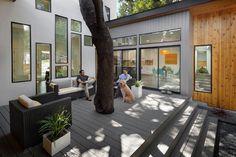 TreeHouse by Matt Fajkus Architecture - www.homeworlddesign. com (11) (Custom)