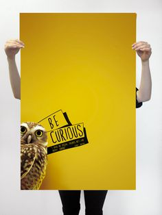 #buho #animal #yellow #bird #text #typography