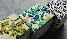 yojoki tea branding packaging japanese beauty beautiful minimal illsutration by ariel di lisio design mindsparkle mag