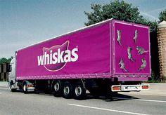 Whiskas Advertisment Design Idea ins