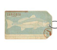 Sarasota - The Everywhere Project #florida #fish #sarasota #two #tag #arms
