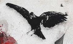 Queen of sins #sin #death #raven #queen