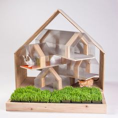Stunning Cat Houses #cat