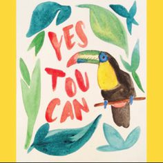 yes toucan | yes you can #toucan #yes #watercolor #paint #animals #mollieThompson #handLettering #lettering
