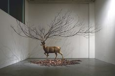 I need a guide: myeongbeom kim #art #installation