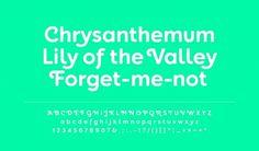 gardens_typeface1.jpg (1600×937) #font #typeface #typography