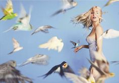Every reform movement has a lunatic fringe #birds #girl