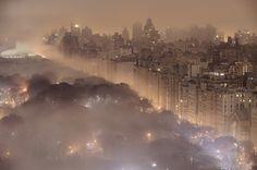 COLT + RANE #nyc