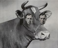 Dan Bina, Milk Cow Blues #art #vintage #milk #collage #cow #found #blues #dan bina