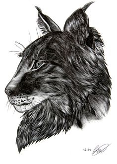 ● LYNX POSTER / on Behance #animation #biro #fineart #head #drawing #fur #illustration #gif #poster #lynx #watercolor #animal
