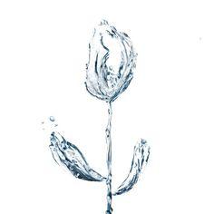 Splashes #life