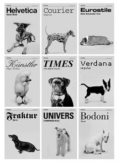 If fonts were dogs | Doobybrain.com #typography #minimal #poster #layout #black and white #dogs