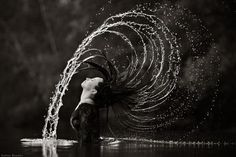 35 Amazing Examples of Black And White Photography