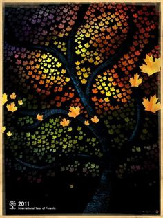 All sizes | 2011: International Year of Forests | Flickr - Photo Sharing! #tree #leaf #wood #autumn #poster #forest