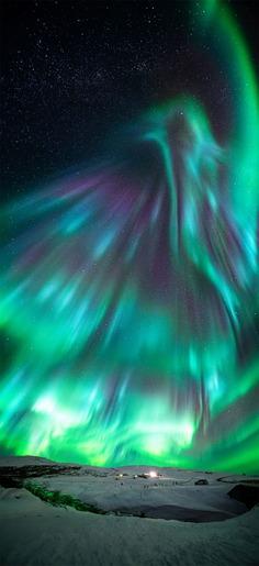 Aurora like phoenix by Wang Zheng, China