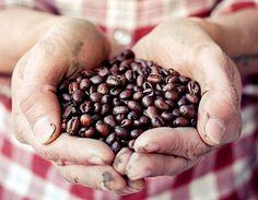 LA MARZOCCO #coffee