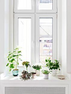 STADHEM #interior design #decoration #decor #deco