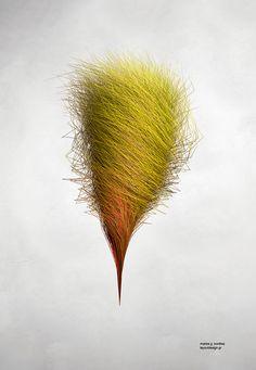 hair? #poster