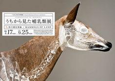 wataru yoshida: composition of mammals #yoshida #illustration #art #wataru