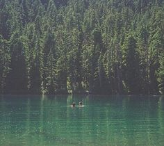 FFFFOUND! #blue #photography #vintage #green