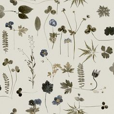 """Botanica"", Eco Wallpaper"