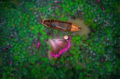 2nd Prize Winner – Category People: Waterlily by helios1412