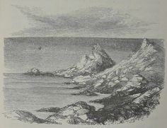 File:Rambles Among the Channel Islands by a Naturalist Jean Louis Armand de Quatrefages de Bréau q.jpg #illustration