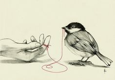 Tiffany Denise (georgiabrokensmile: An invisible red thread...) #finger #thread #red #bird