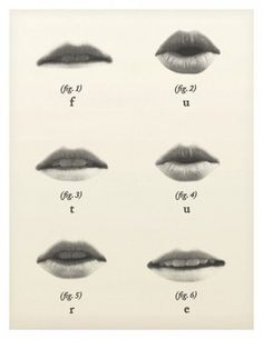Lips #chart #lips #info graphic #ref