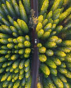 Fantastic Travel Landscape Photography by Mo Habib