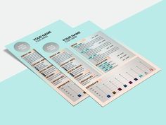 Free Neat Resume Template with Soft Colors Combination
