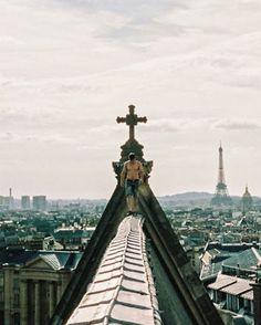 #paris #grifters #rooftop #graffiti