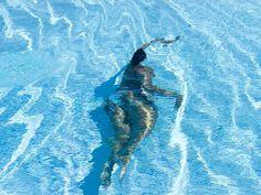 #Swim #Pool #water #distortion