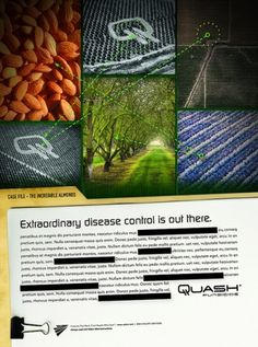 Quash Single Page Print Ad | Flickr - Photo Sharing! #files #design #advertising #art #x #layout #agriculture