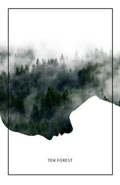 The Forest poster. Daily design inspiration. Love the natural image cropped with the simple shape.